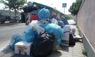Emergenza verde e rifiuti: l'Amministrazione ha pronto un piano di intervento straordinario