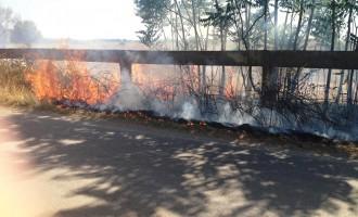 Incendio sulla Litoranea