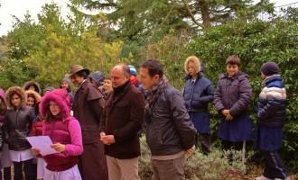 Scuola a Tolfa poesie e canti per la festa dell'albero