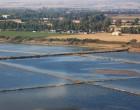 Saline di Tarquinia: 20 anni tra studi, ricerche e didattica