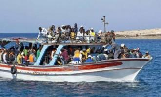 """Migranti, Petrillo: """"L'impiego nei lavori socialmente utili è importante per l'integrazione"""""""