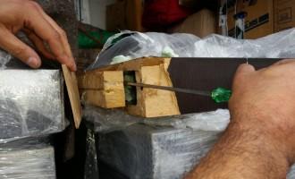 Porto di Venezia – Fusina: Sequestrati dalla Guardia di Finanza e dalla Dogana di Venezia oltre 200 kg di marijuana
