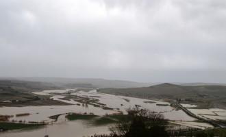 Ambiente: fiume Marta e lago Bolsena  in condizioni critiche