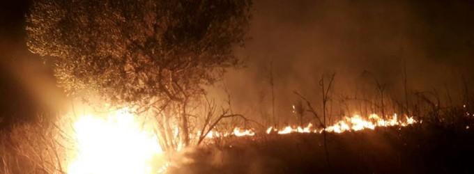 Incendio a Cerveteri dopo Civitavecchia e Santa Marinella