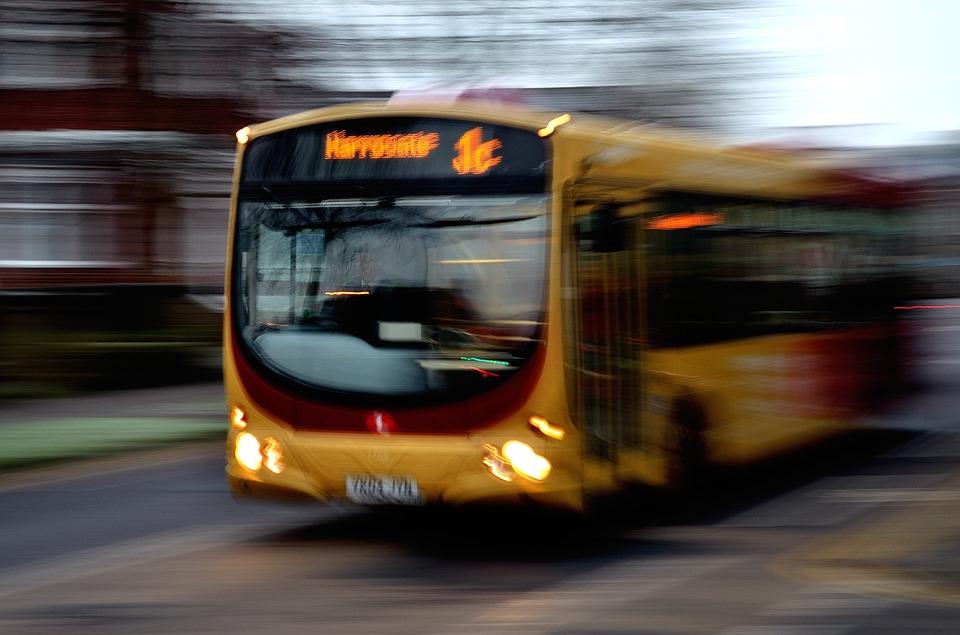 Sesso sul bus davanti ai passeggeri l'autista chiama i Carabinieri denunciati due ragazzi