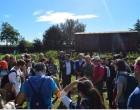 Tarquinia, Semi di Pace raccoglie oltre una tonnellata di cibo