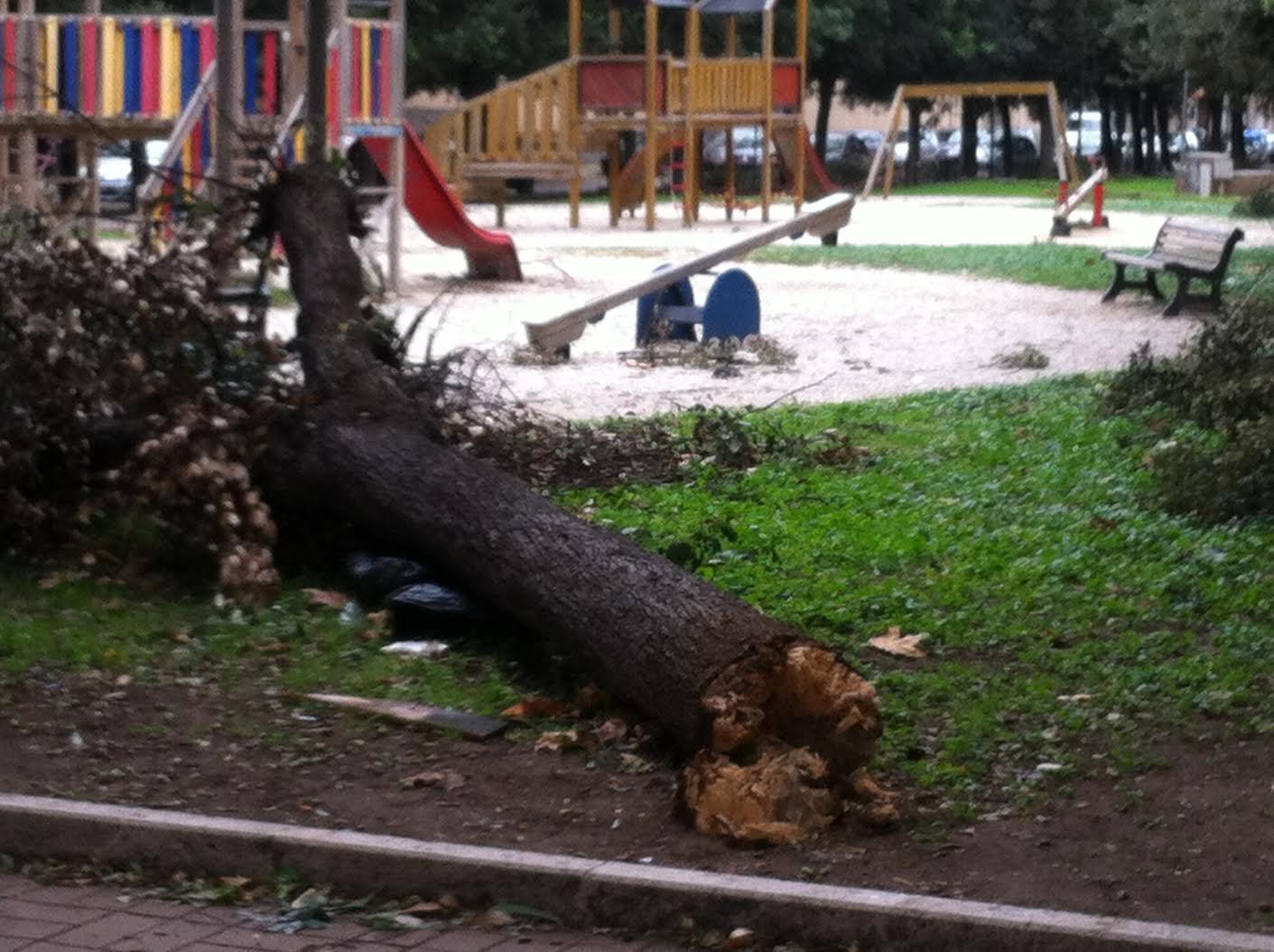 Il Comune di Ladispoli rende note le modalità di comunicazione dei danni subiti dopo la tromba d'aria
