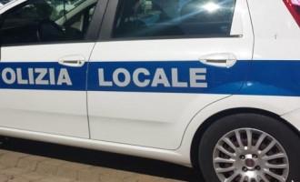 Comandante del Corpo di Polizia Locale a Ladispoli, pubblicato l'avviso