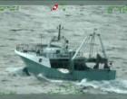 """Guardia Costiera, conclusa l'operazione """"Countdown"""" a tutela dei consumatori"""