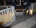 Ricci di mare: ora scattano anche le denunce penali