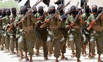 Terrorismo islamico il fenomeno dei lupi solitari tra storia e psicologia