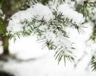Domani possibili nevicate, il Comune di Fiumicino attiva il piano emergenza