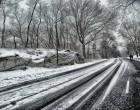 Dopo la bufera di neve a Tolfa domani scuole aperte e ritorno alla normalità