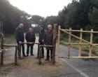 Fregene: la lecceta trasformata in 20 ettari di parco