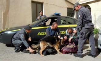Sequestrati 90 kg di hashish nel porto di Civitavecchia