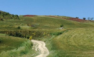 SS 675 Monte Romano Est-Civitavecchia: chiesta un'audizione alla Presidenza del Consiglio dei Ministri