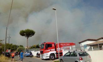 """Incendi, Minnucci (PD): """"Continuano i roghi: piromani come terroristi"""""""