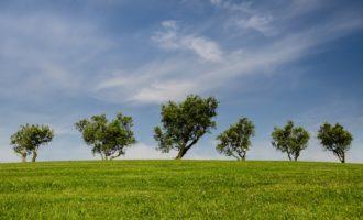 Autunno con il Fondo Ambiente Italiano