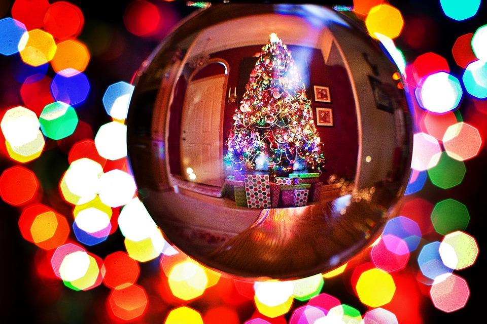 Venerdi 8 dicembre a Civitavecchia l'accensione dell'albero di Natale