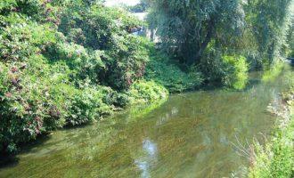 In Comune la petizione per salvare il fiume Marta ed il mare di Tarquinia