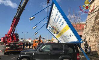 Forte vento, cade un grande cartellone pubblicitario al porto di Civitavecchia rimosso dai VVF che salvano anche un cane
