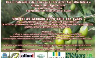 Cerveteri, a Sala Ruspoli un incontro tecnico-formativo sull'Olio