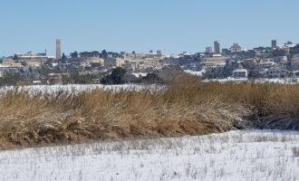 Tarquinia, l'agricoltura stretta in una morsa tra gelo e siccità possibile presentare domanda per le provvidenze