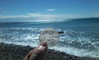 Dalla Campania alla Marina di Civitavecchia il lungo viaggio dei dischetti di plastica spiaggiati
