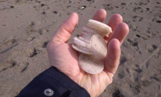 Tarquinia, raccolti da Fare Verde centinaia di dischetti di plastica sulla spiaggia di Spinicci
