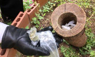 I Carabinieri scoprono dosi di droga nascoste in un tronco d'albero