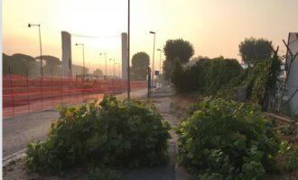"""Fiumicino, Poggio: """"Marciapiedi off limits per anziani e disabili"""""""