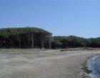 Tarquinia, continuano i controlli sulle spiagge di Sant' Agostino e San Giorgio