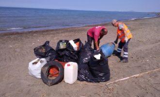 Tarquinia, pulito il tratto di spiaggia tra Marina Velca e Pian di Spille