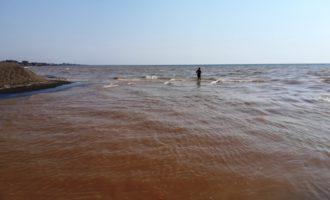 Tarquinia, falso allarme social di un presunto inquinamento da pomodoro per il fiume Marta
