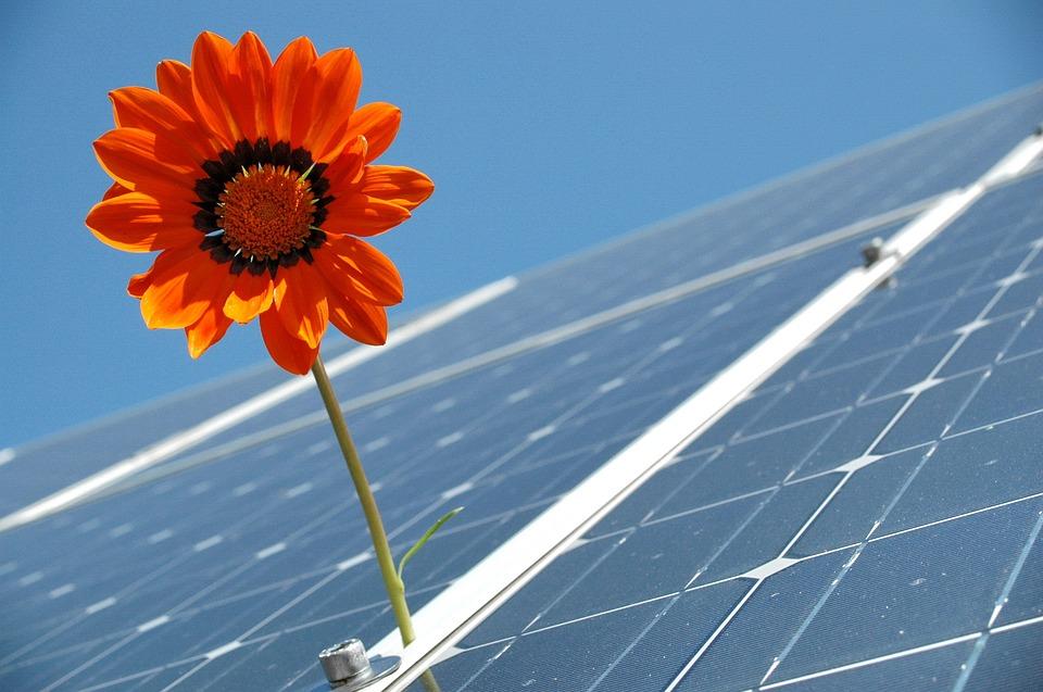 """Civitavecchia, Grasso (La Svolta) su ENEL e 5 stelle: """"Si rispetti l'accordo per le rinnovabili"""""""