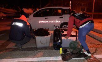 La Guardia Costiera di Civitavecchia sequestra e restituisce al mare altri 7500 ricci di mare