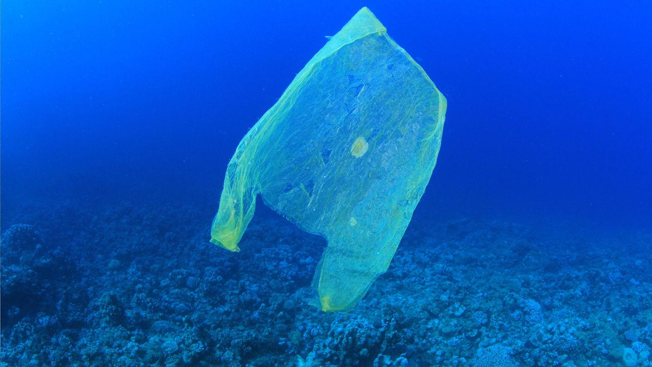 """""""Il Mare e la plastica…lo stato dell'arte"""" se ne parla al porto di Civitavecchia"""
