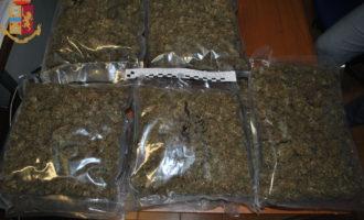 Cerveteri, nascondeva 12 kg. di marijuana e 30 gr. di cocaina arrestato 42enne