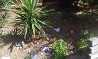 Fare Verde sollecita il Comune di Civitavecchia per la situazione di via Palmiro Togliatti