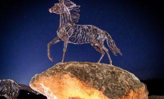 Tarquinia, al via la quinta edizione di tra i rami dell'arte