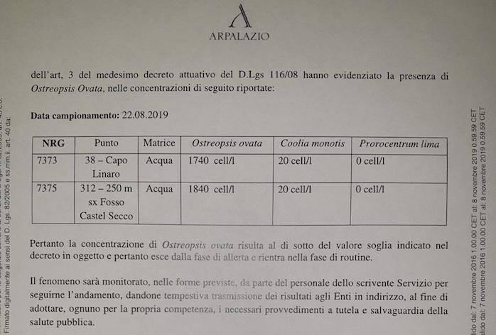 """Alga """"Ostreopsis Ovata"""" a Santa Marinella nessun pericolo lo confermano i risultati dell'arpa Lazio"""
