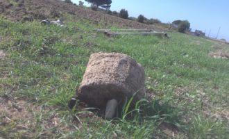A Tarquinia dal lontano passato riaffiorano reperti archeologici di un tempio