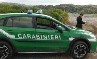 L' Epifania porta la natura negli ospedali pediatrici con i Carabinieri Forestali