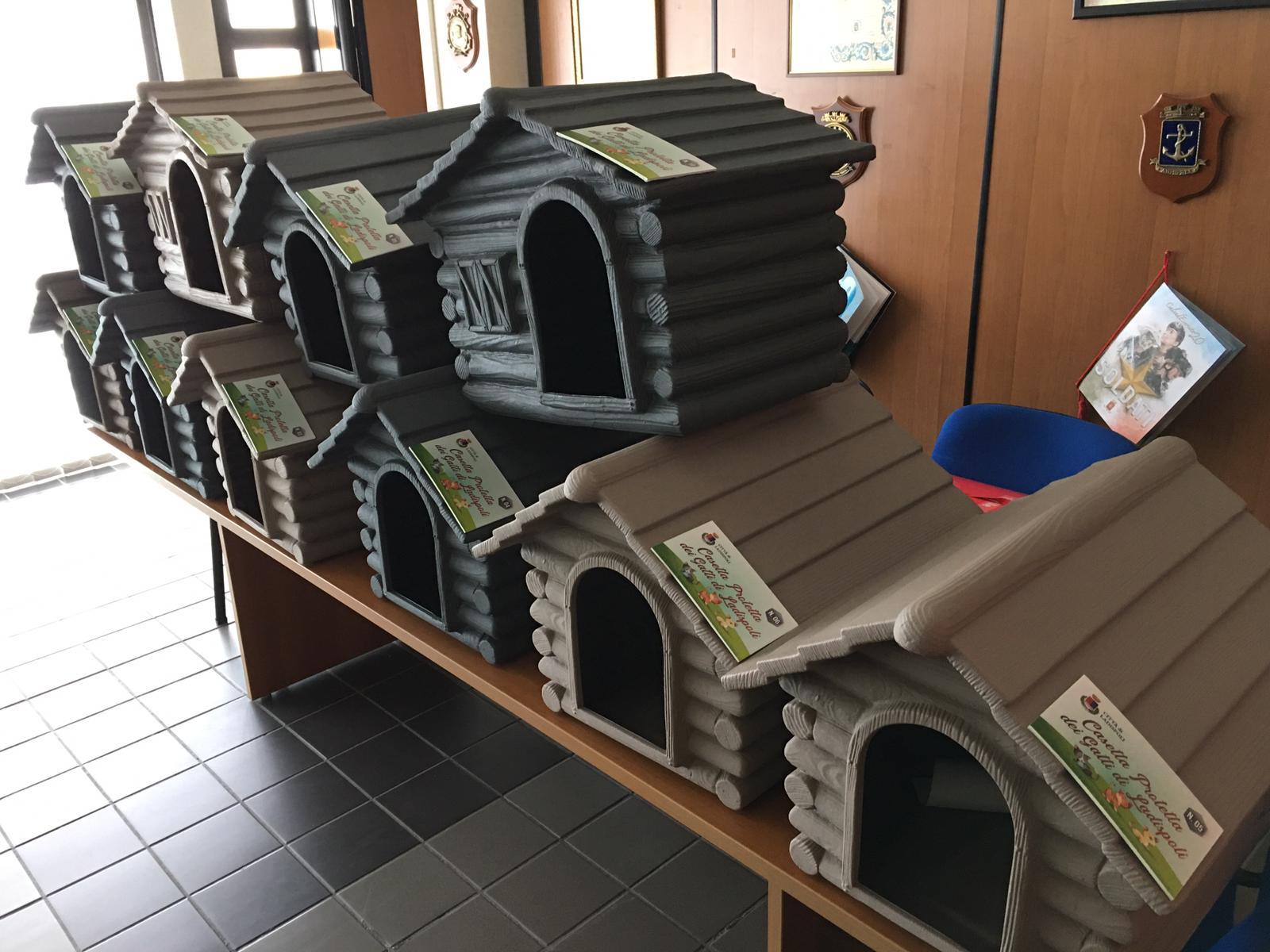 Ladispoli, consegnate le casette di ricovero per gatti randagi