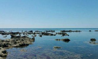 """""""Pescicoltura"""" il comune di Tarquinia chiede la riapertura della Conferenza dei Servizi"""